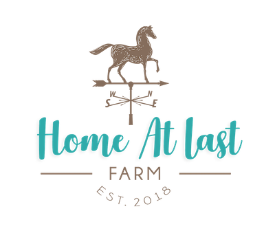 Home at Last Logo